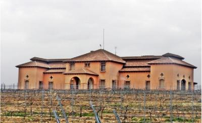 Modern winery with a vineyard in LaGuardia, Alava