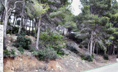The plot in elite  residential area of Altea Hills