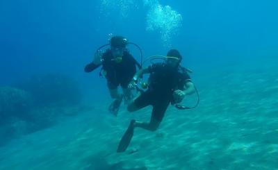 Дайвинг на побережье Коста Бланка